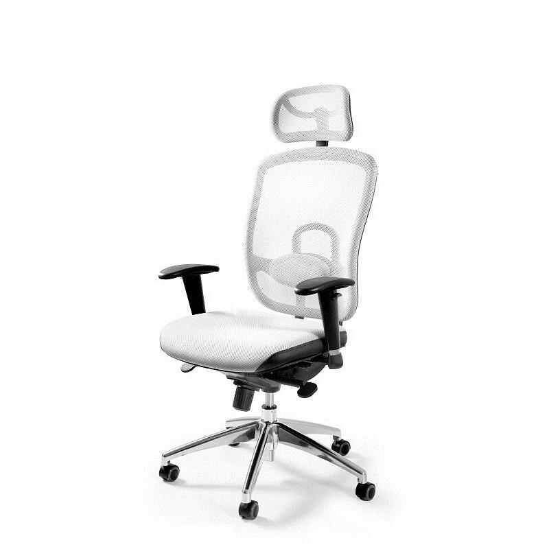 Profesjonalny fotel biurowy Berg