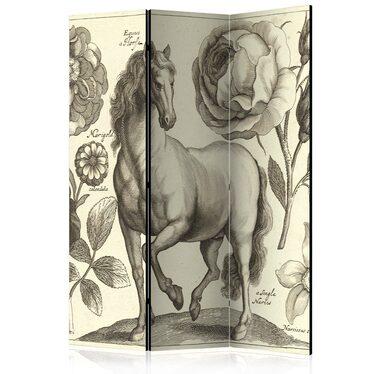 Parawan 3-częściowy - Koń