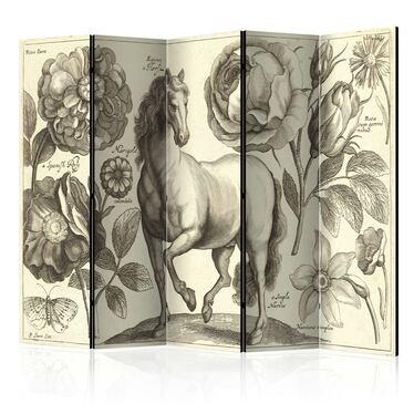 Parawan 5-częściowy - Koń