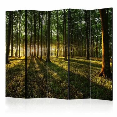 Parawan 5-częściowy - Poranek w lesie