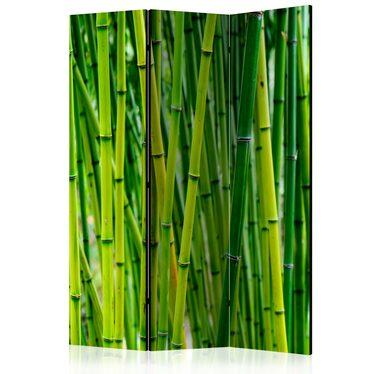 Parawan 3-częściowy - Bambusowy las