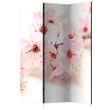 Parawan 3-częściowy - Kwiat wiśni