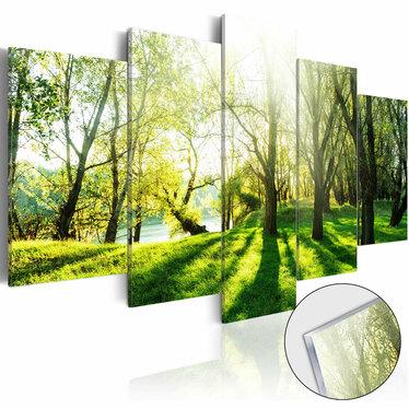 Obraz na plexi - Zielona polana