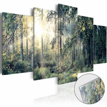 Obraz na plexi - Baśniowy krajobraz