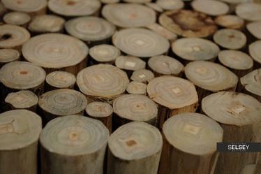Stołek Dela z drewna tekowego