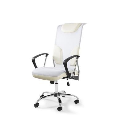 Profesjonalny fotel biurowy Norman