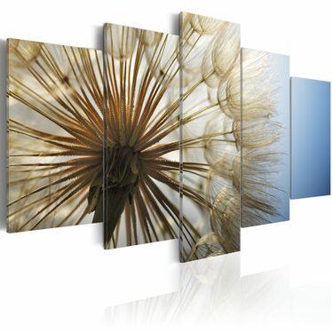 Obraz - Admiracja delikatności 200x100 cm