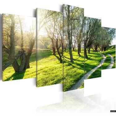 Obraz - Majowy sad 200x100 cm