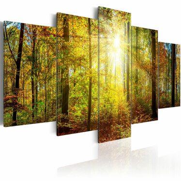 Obraz - Mistyczny Las 100x50 cm