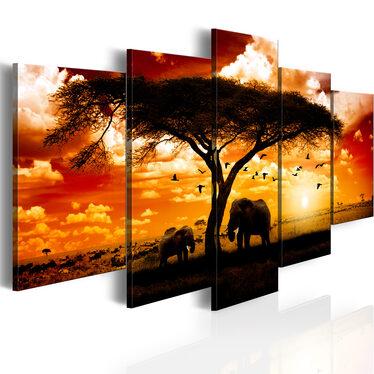Obraz - Ptaki nad sawanną 100x50 cm