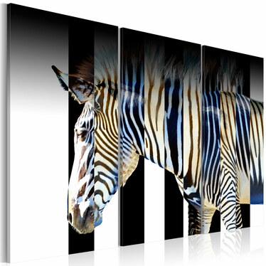 Obraz - Paski 60x40 cm