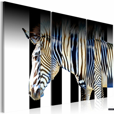 Obraz - Paski 120x80 cm