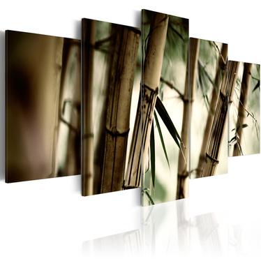 Obraz - Azjatycki las bambusowy 200x100 cm
