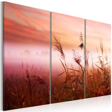 Obraz - Cicha łąka 60x40 cm