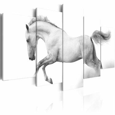 Obraz - Koń - pasja i wolność 200x100 cm