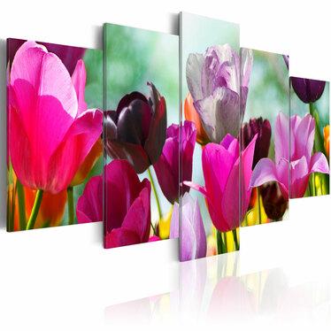 Obraz - Różowo i wesoło 200x100 cm