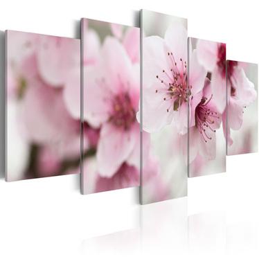 Obraz - Wiśnia - łagodność i piękno 100x50 cm