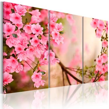Obraz - Kwiat wiśni 120x80 cm