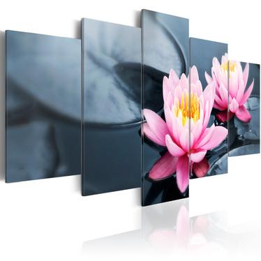 Obraz - Marzenie o lilii wodnej 100x50 cm