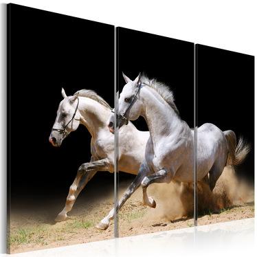 Obraz - Konie - moc i prędkość 120x80 cm