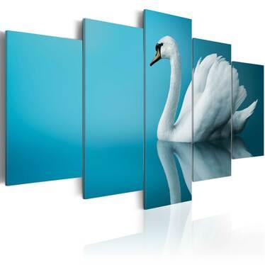 Obraz - Łabędź w błękicie 100x50 cm