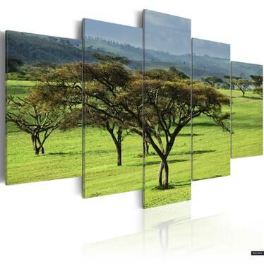 Obraz - Zielona Afryka 200x100 cm