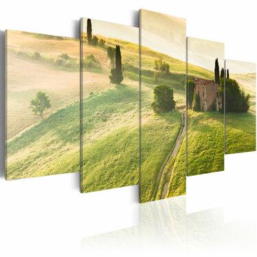Obraz - Zielona Toskania 200x100 cm