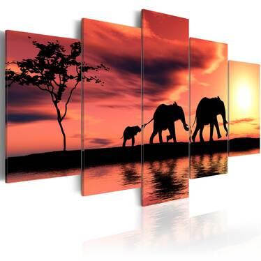 Obraz - Rodzina afrykańskich słoni 200x100 cm