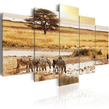 Obraz - Zebry na sawannie 200x100 cm