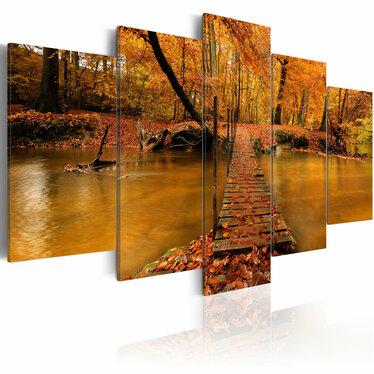 Obraz - Redness of autumn 100x50 cm