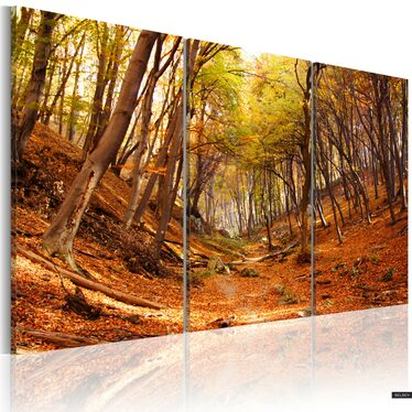 Obraz - Jesienny wąwóz  120x80 cm