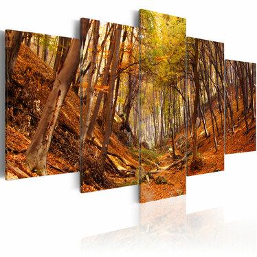 Obraz - Jesień w oranżu 100x50 cm