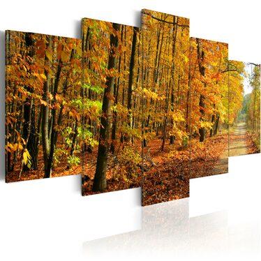 Obraz - Aleja pośród kolorowych liści 200x100 cm