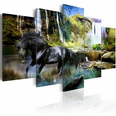 Obraz - Czarny rumak na tle rajskiego wodospadu 100x50 cm