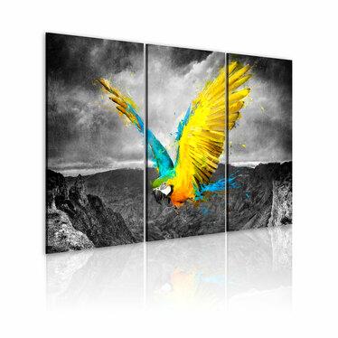 Obraz - Rajski ptak 120x80 cm
