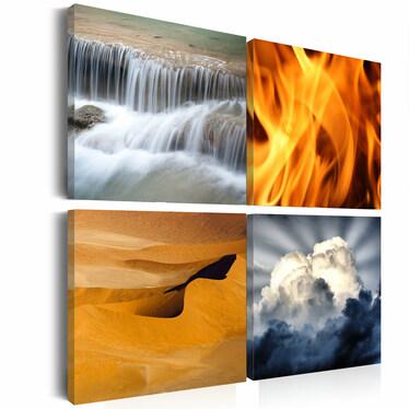 Obraz - Różnorodność przyrody 80x80 cm