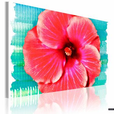 Obraz - Hawaiian flower 60x40 cm