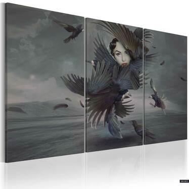 Obraz - Feather dress 120x80 cm