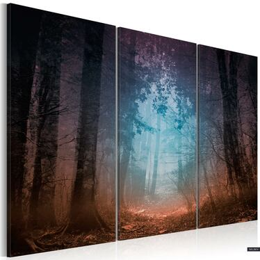 Obraz - Edge of the forest - triptych 120x80 cm