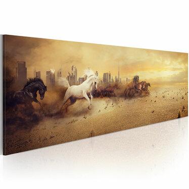 Obraz - Miasto ogierów 120x40 cm