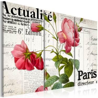 Obraz - Paris directeur 120x80 cm