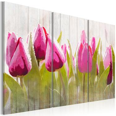 Obraz - Wiosenny bukiet tulipanów 120x80 cm