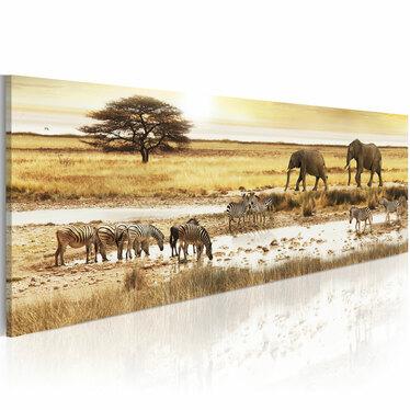 Obraz - Afryka: przy wodopoju 120x40 cm
