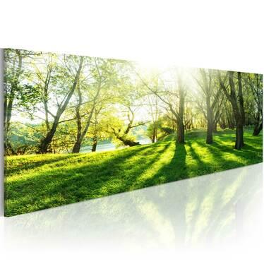 Obraz - W promieniach słońca 135x45 cm