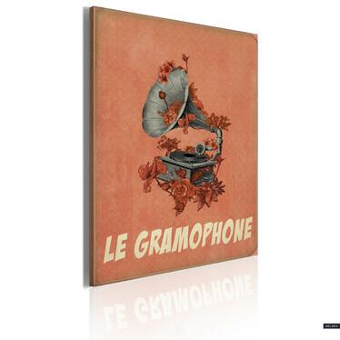 Obraz - Le gramophone 50x70 cm