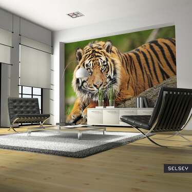 Fototapeta Tygrys sumatrzański