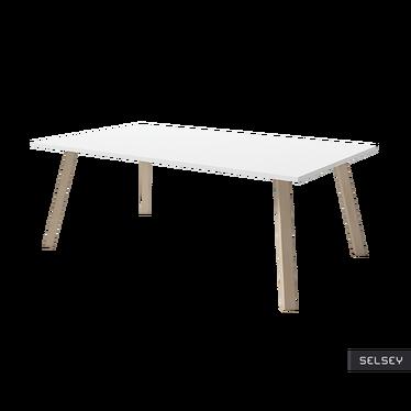 Stolik kawowy Passa 120x70 cm