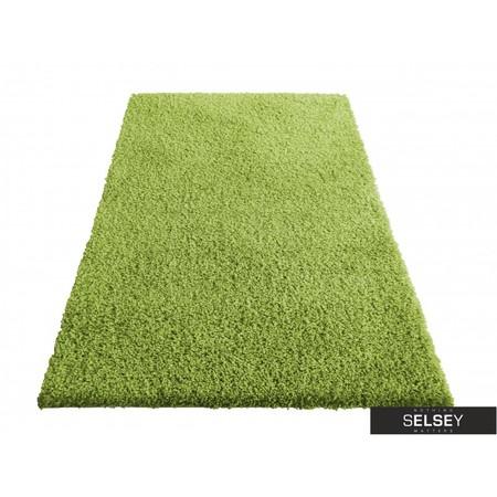 Dywany Shaggy zielony